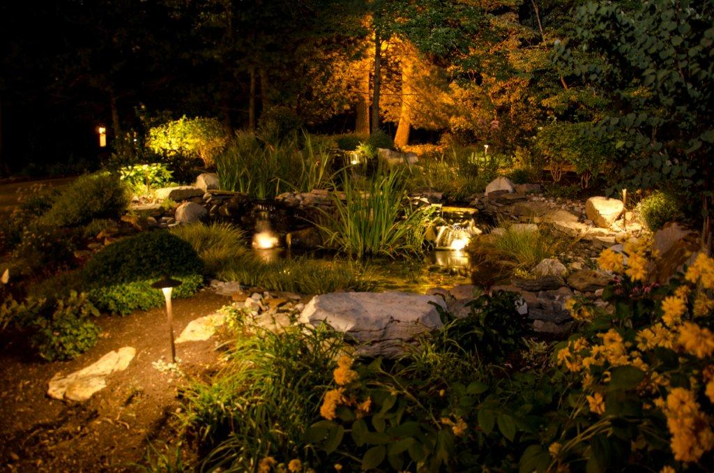 Nighttime Pond Lighting