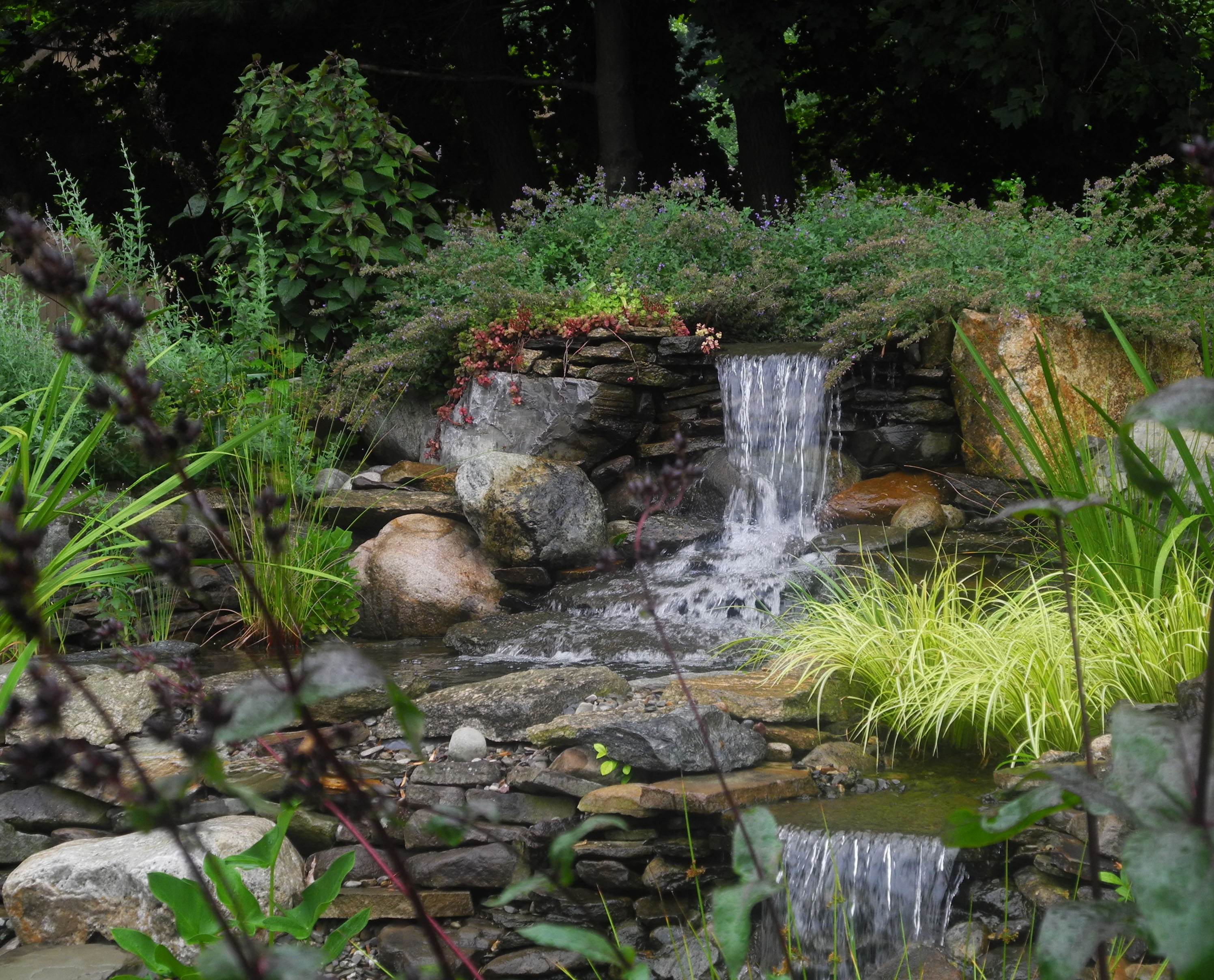 what does the average pond cost?