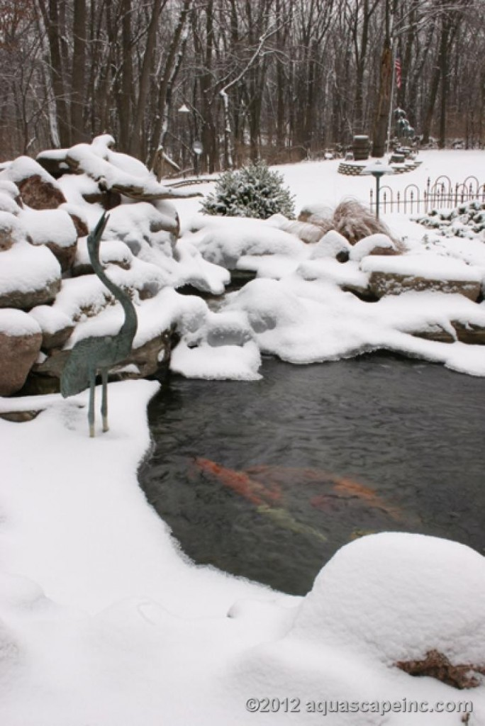 Winter Pond Care