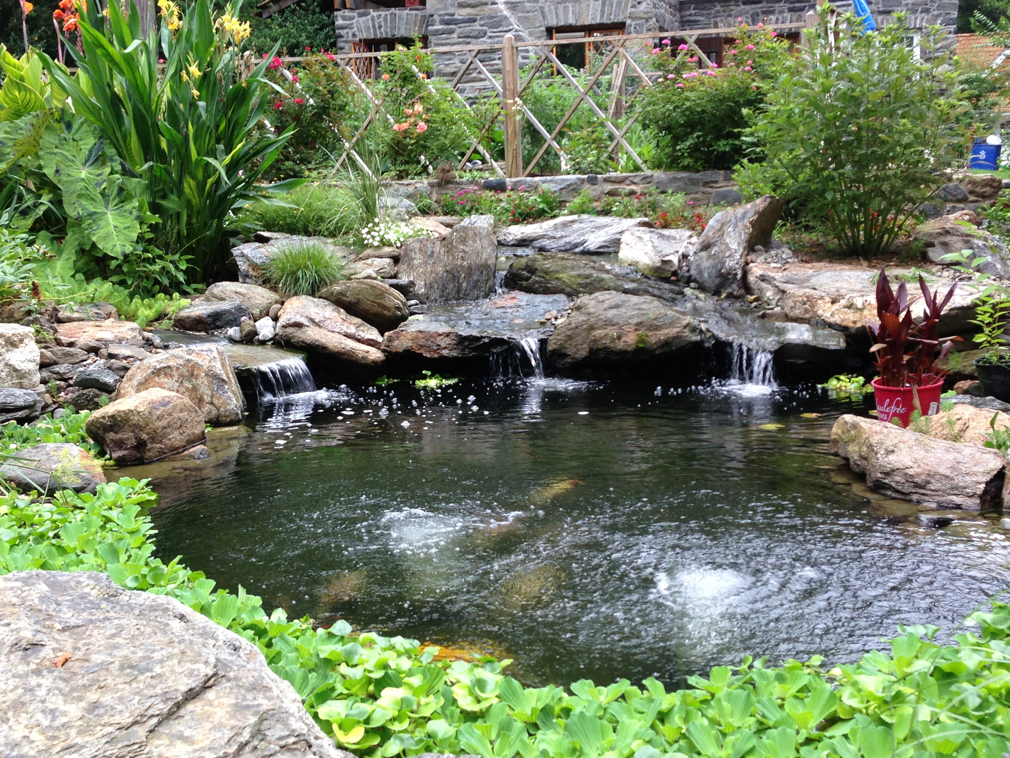 How to choose the best stone for your pond aquareale for Stone koi pond