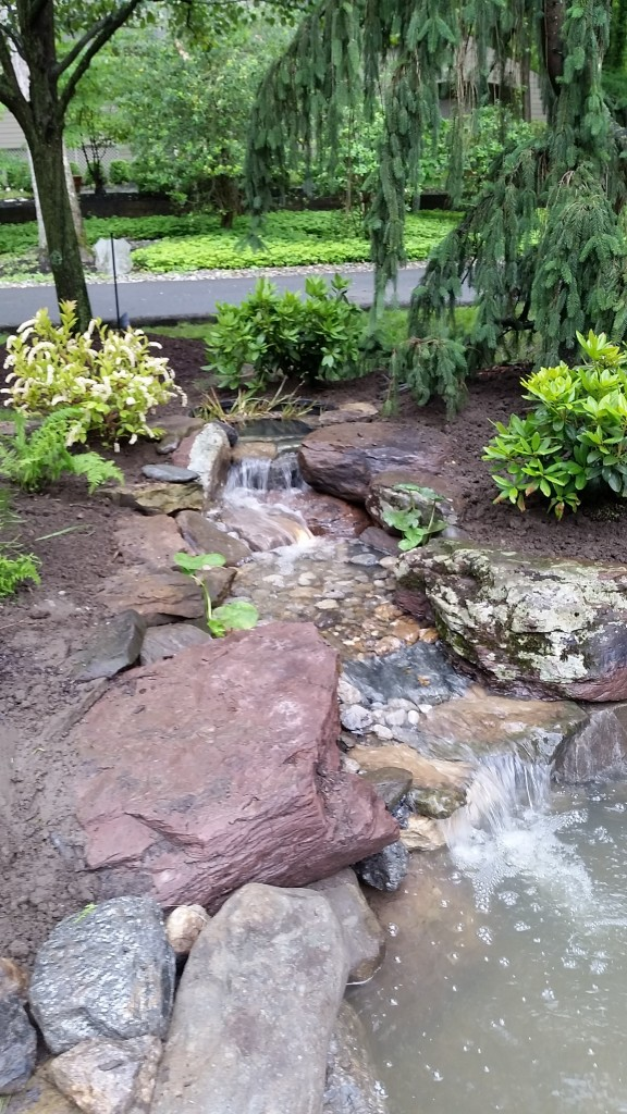 How to choose the best stone for your pond: Field Stone