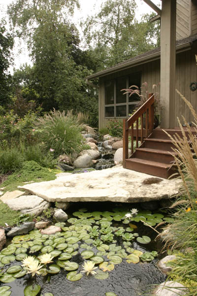 Front yard water feature-- stone bridge