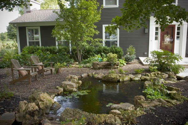 Front yard water feature--ecosystem pond