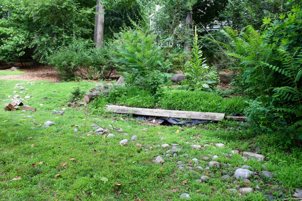 Stormwater Management-- before