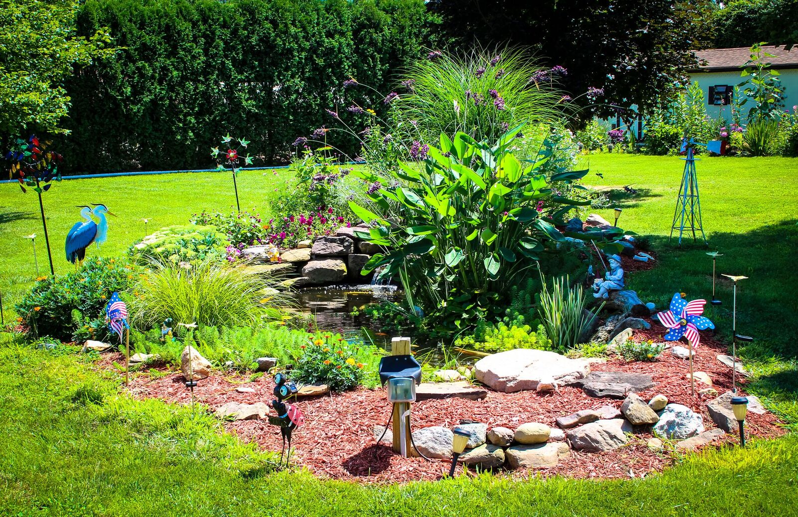 Summer Pond Care