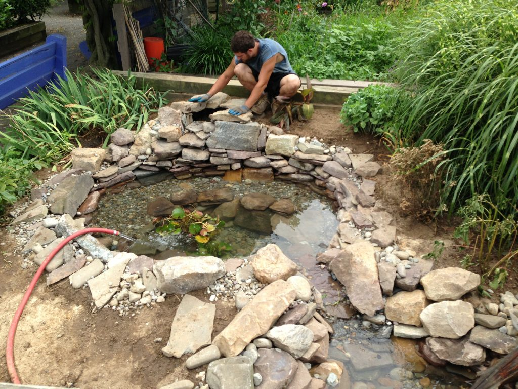 Philadelphia Exploratory Pond Cleaning