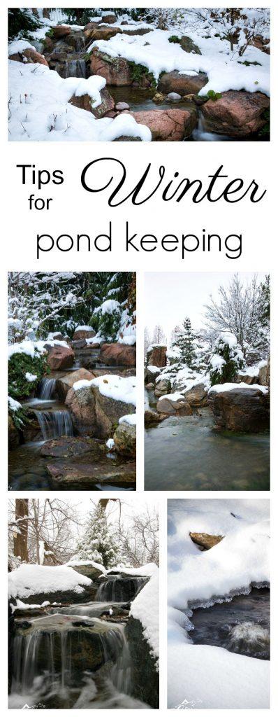 Philadelphia Pond