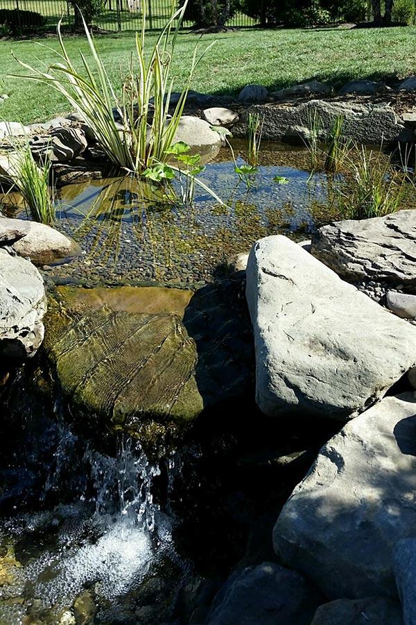 Wetland Filter waterfall