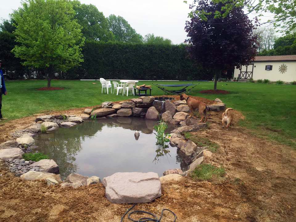 Philly koi pond after