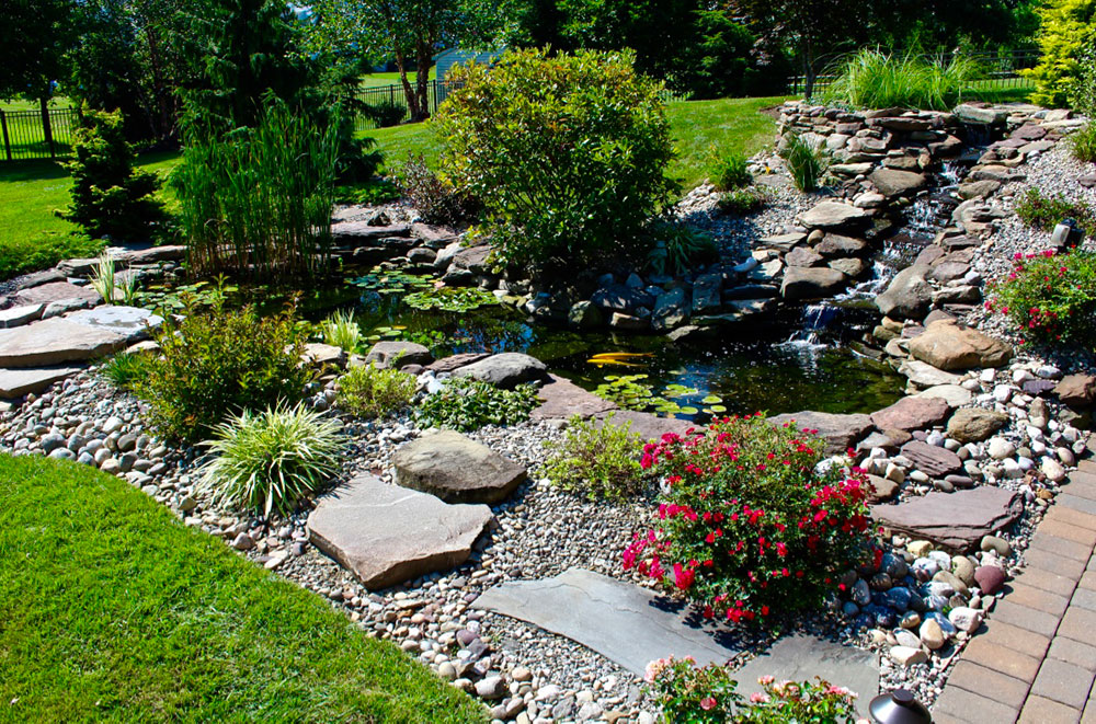Seasonal Pond Care Tips