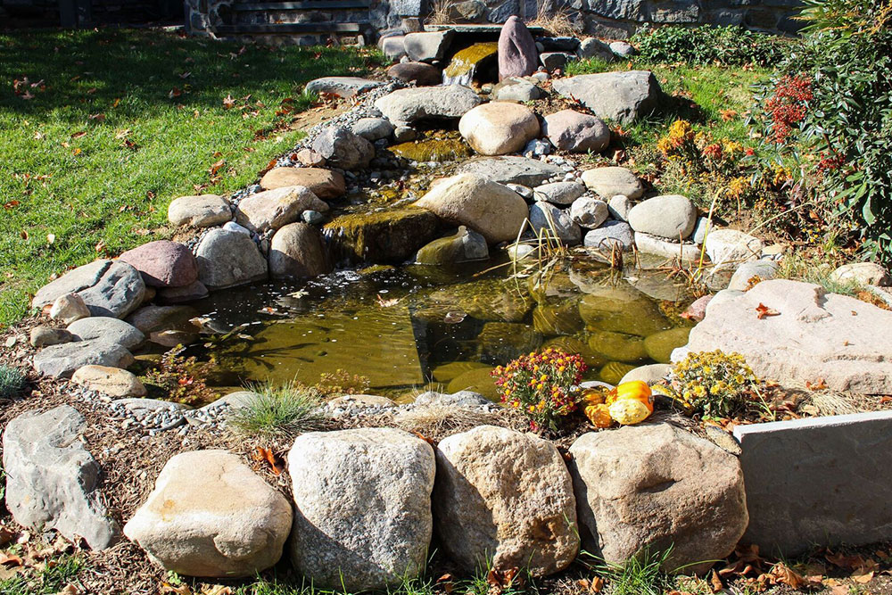 Backyard pond with waterfall and stream in Fall