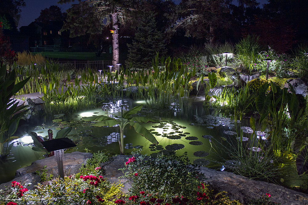 Koi pond with underwater LED lights