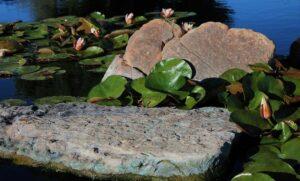 Rocks for ponds